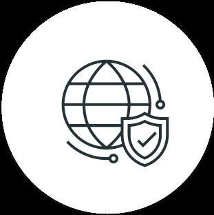 Proxy IP privado